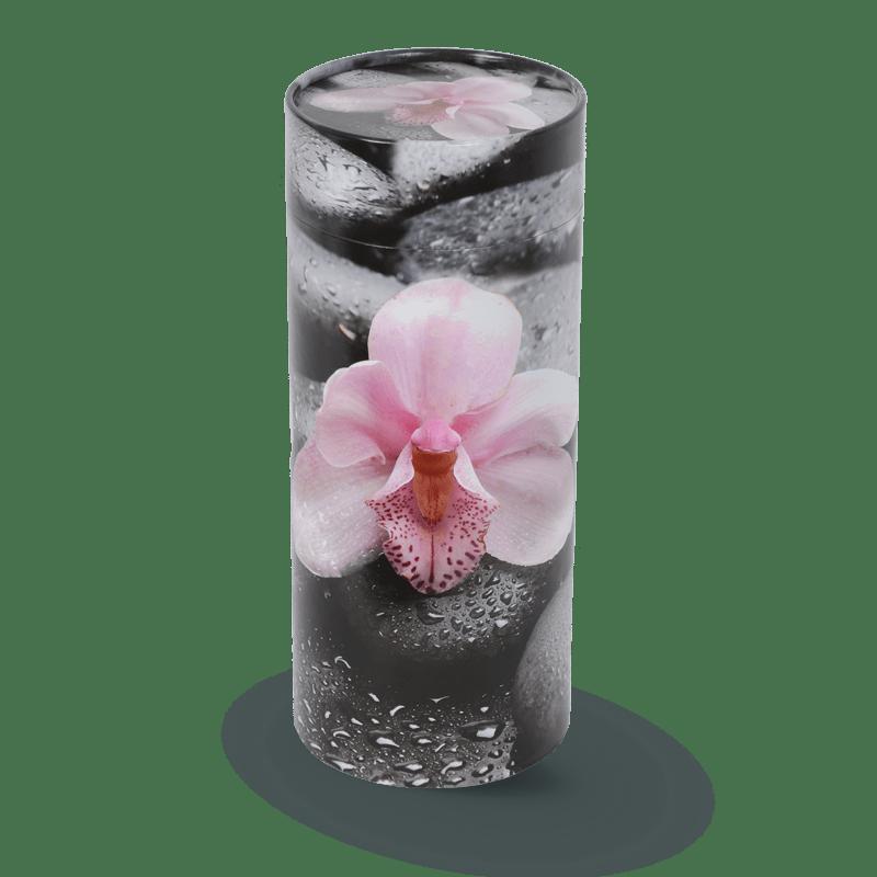 Urne orchidée